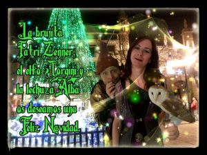 Lacasadelabrujita-Navidad 2013 (2)